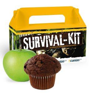Snack-Box Muffin & Apfel als Werbeartikel mit Logo im PRESIT Online-Shop bedrucken lassen