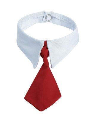 Detailansicht 1 – Krawatte