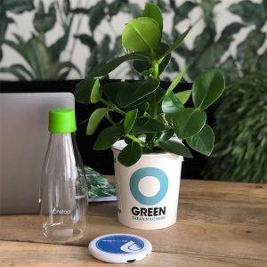 Home-Office Set mit Flasche Drinktimer und Pflanze