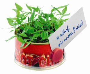 Minigarten Hot mit Magnet als Werbeartikel mit Logo im PRESIT Online-Shop bedrucken lassen