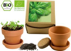 Bio-Pflanz-Set Basilikum als Werbeartikel mit Logo im PRESIT Online-Shop bedrucken lassen