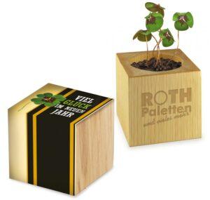 Pflanz-Holz Glücksklee als Werbeartikel mit Logo im PRESIT Online-Shop bedrucken lassen